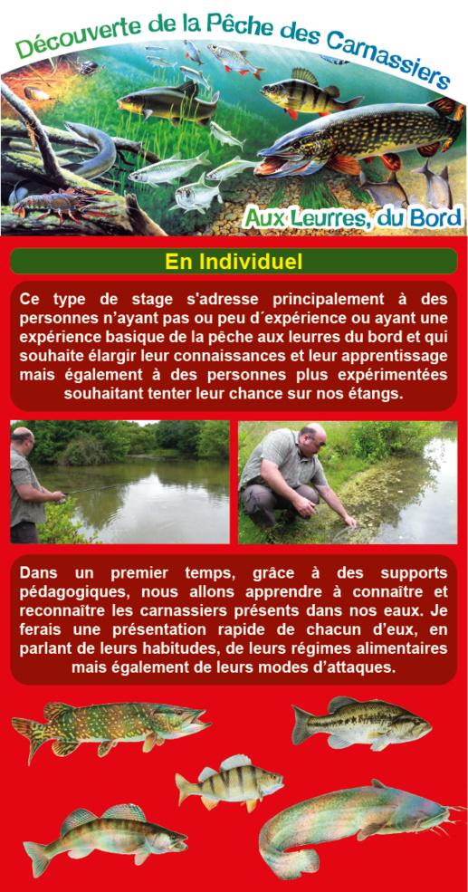 Découverte de la Pêche des Carnassiers aux Leurres, du Bord, en Vendée