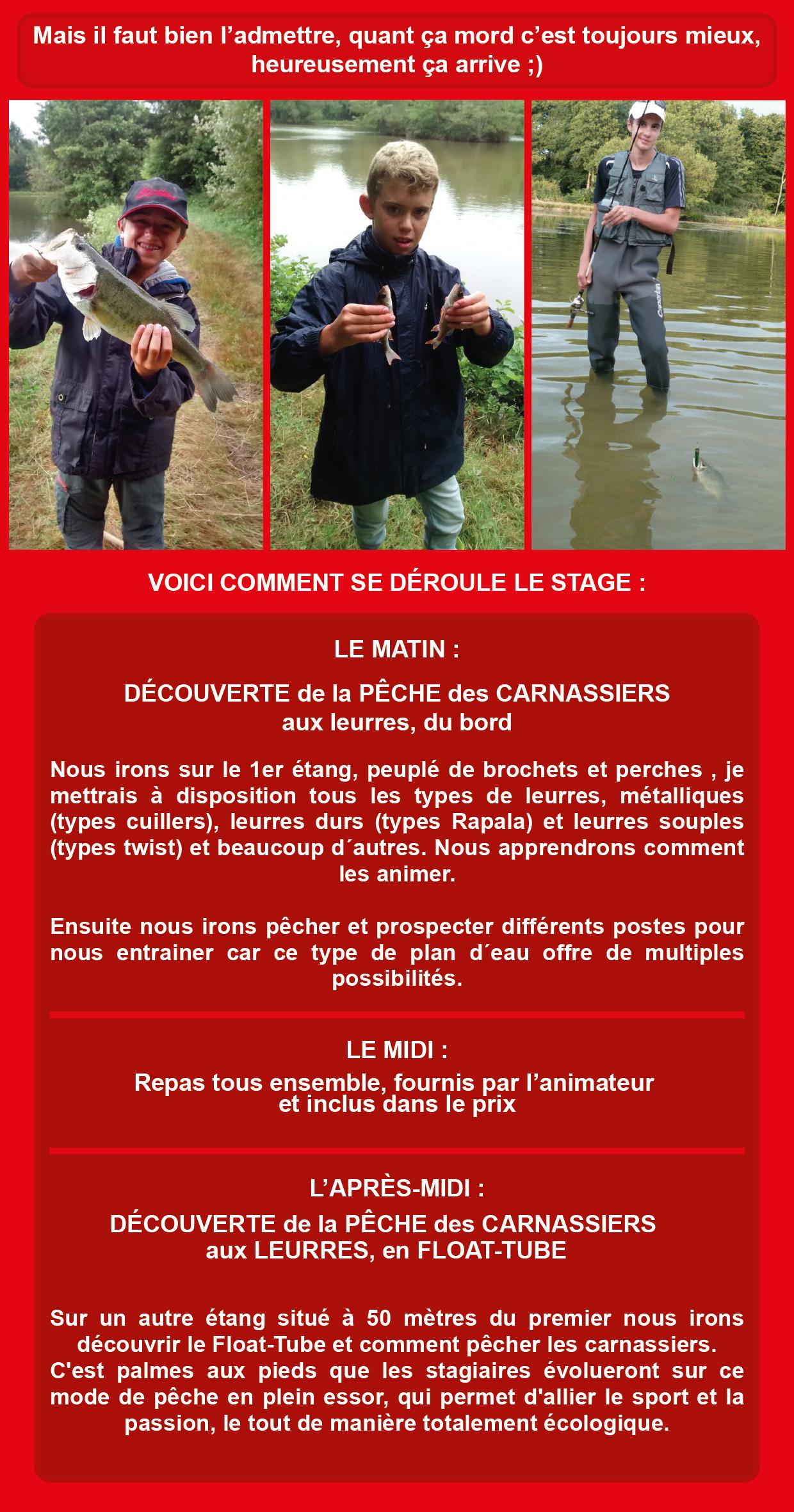 Stage Carnassiers Ados, Journée Complète,en Vendée